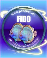 pezdisco.es -FIDO- Final Internacional Discus Online
